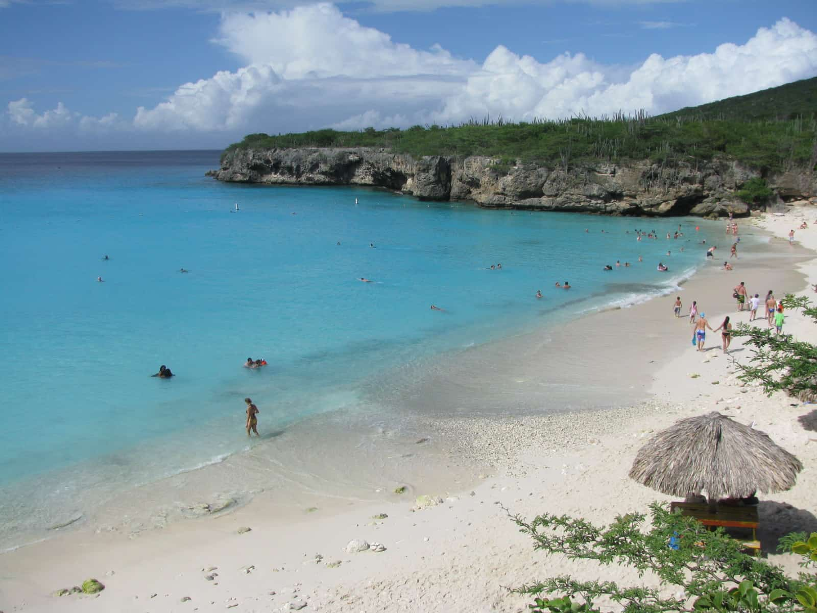 Curacao Island Grote Knip