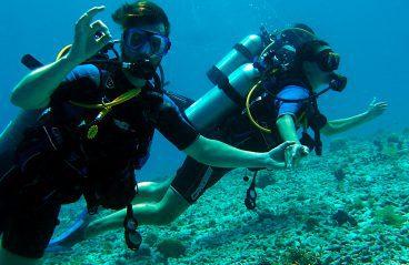 Intro Diving Klein Curacao 3