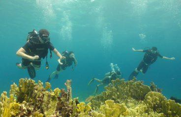 Scuba Diving Curacao 6