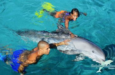 Swim with Dolphins Curacao 2