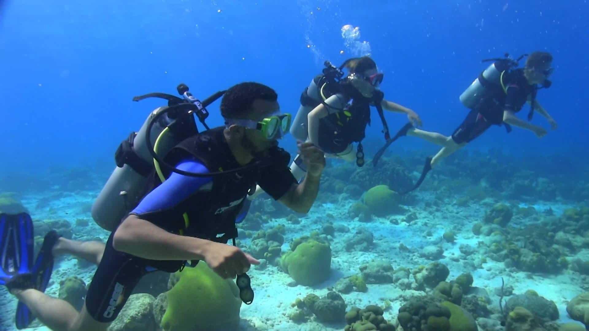 PADI Scuba Diving Curacao 1