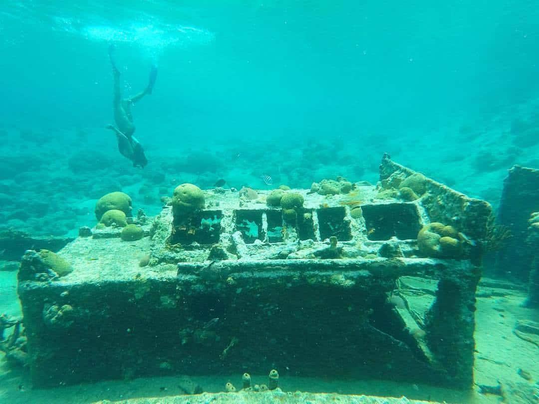 Catamaran BlueFinn Curacao Snorkeling Shipwreck 3