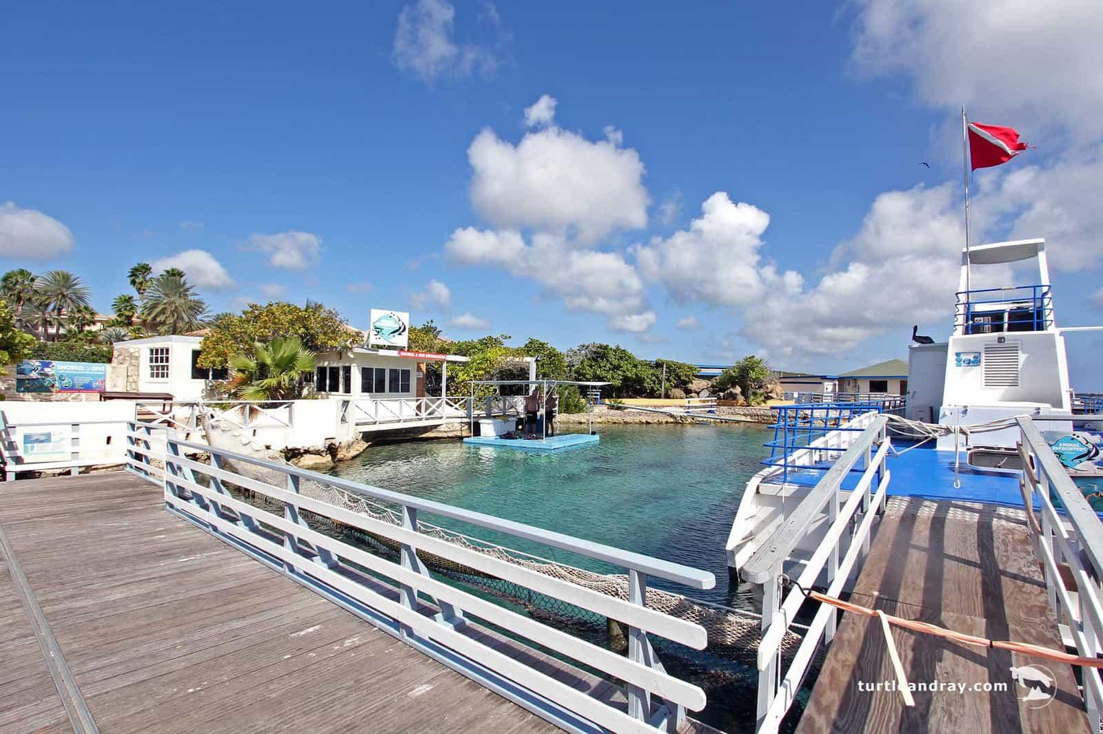 Animal Encounter Sea Aquarium Curacao 3