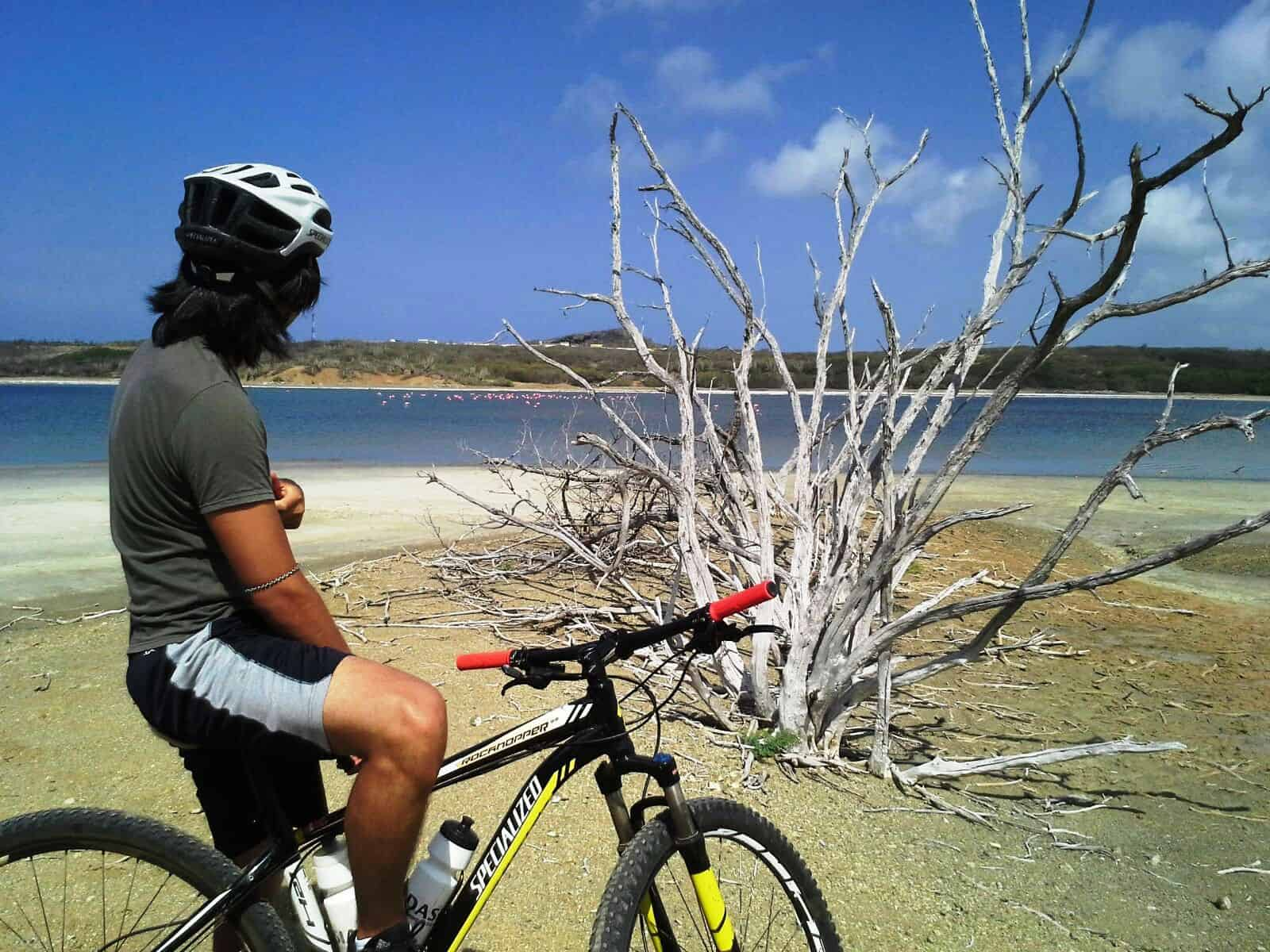 Mountain Bike Curacao 2- on the Caribbean island of Curacao, Netherlands Antilles
