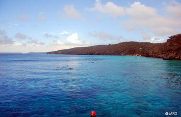 Blue Room Curaçao Snorkeling 6
