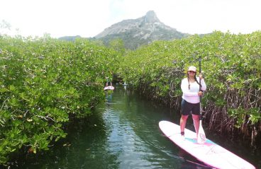 Paddleboarding Spanish Water Curaçao 6