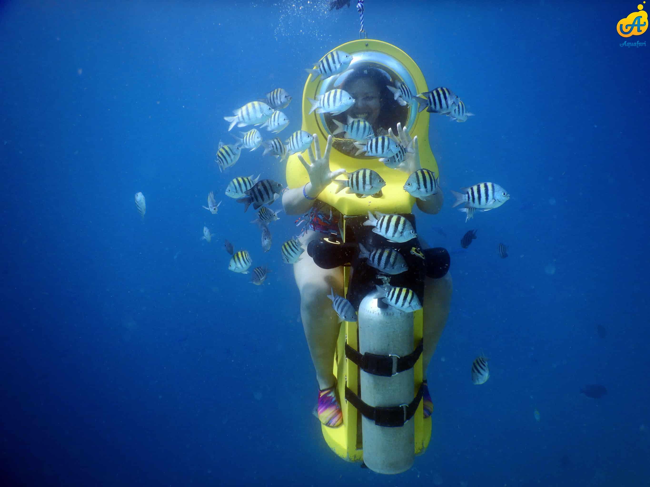 Aquafari Curaçao 2