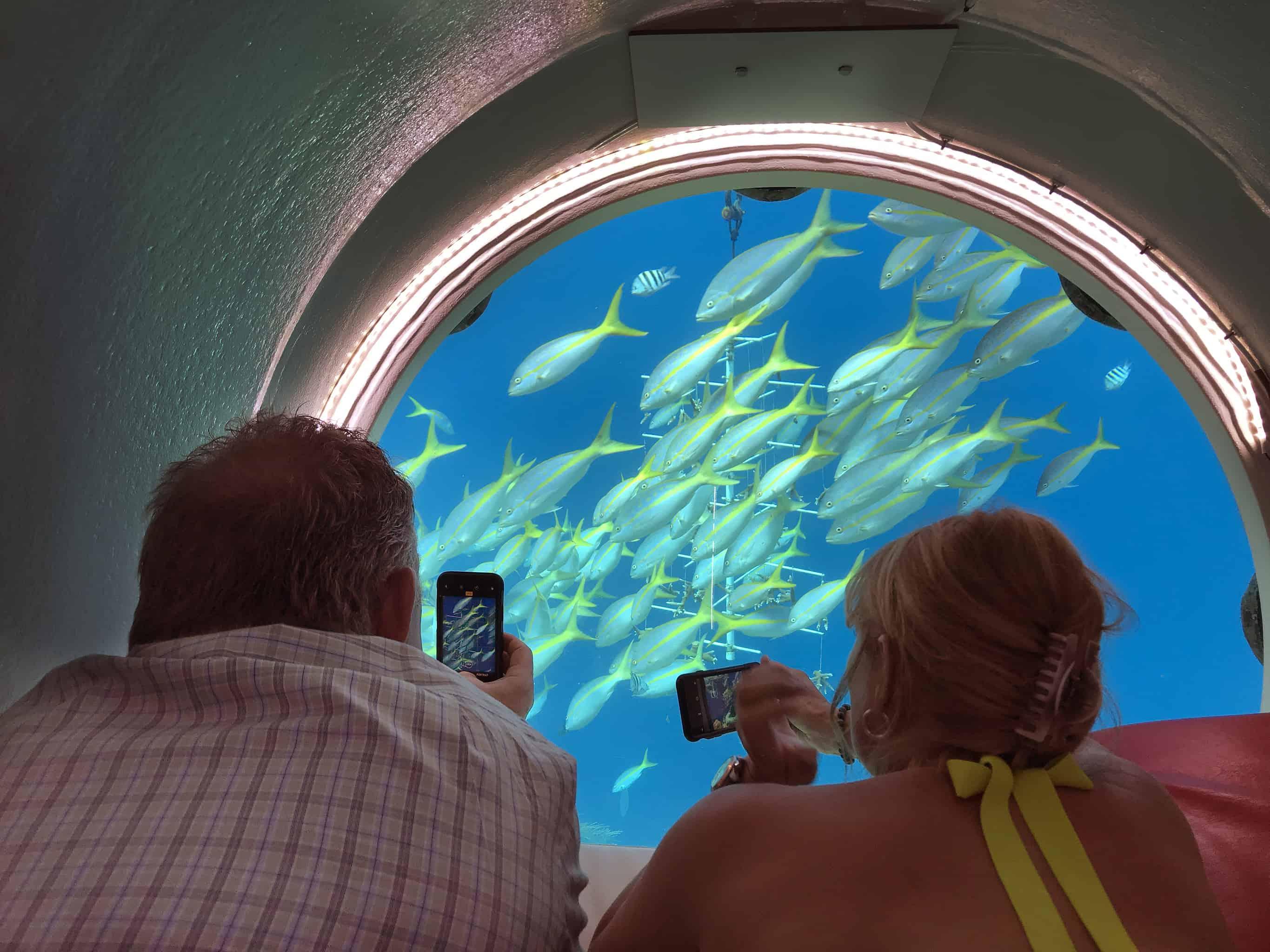 Curaçao Sea Aquarium Ocean Lens 4