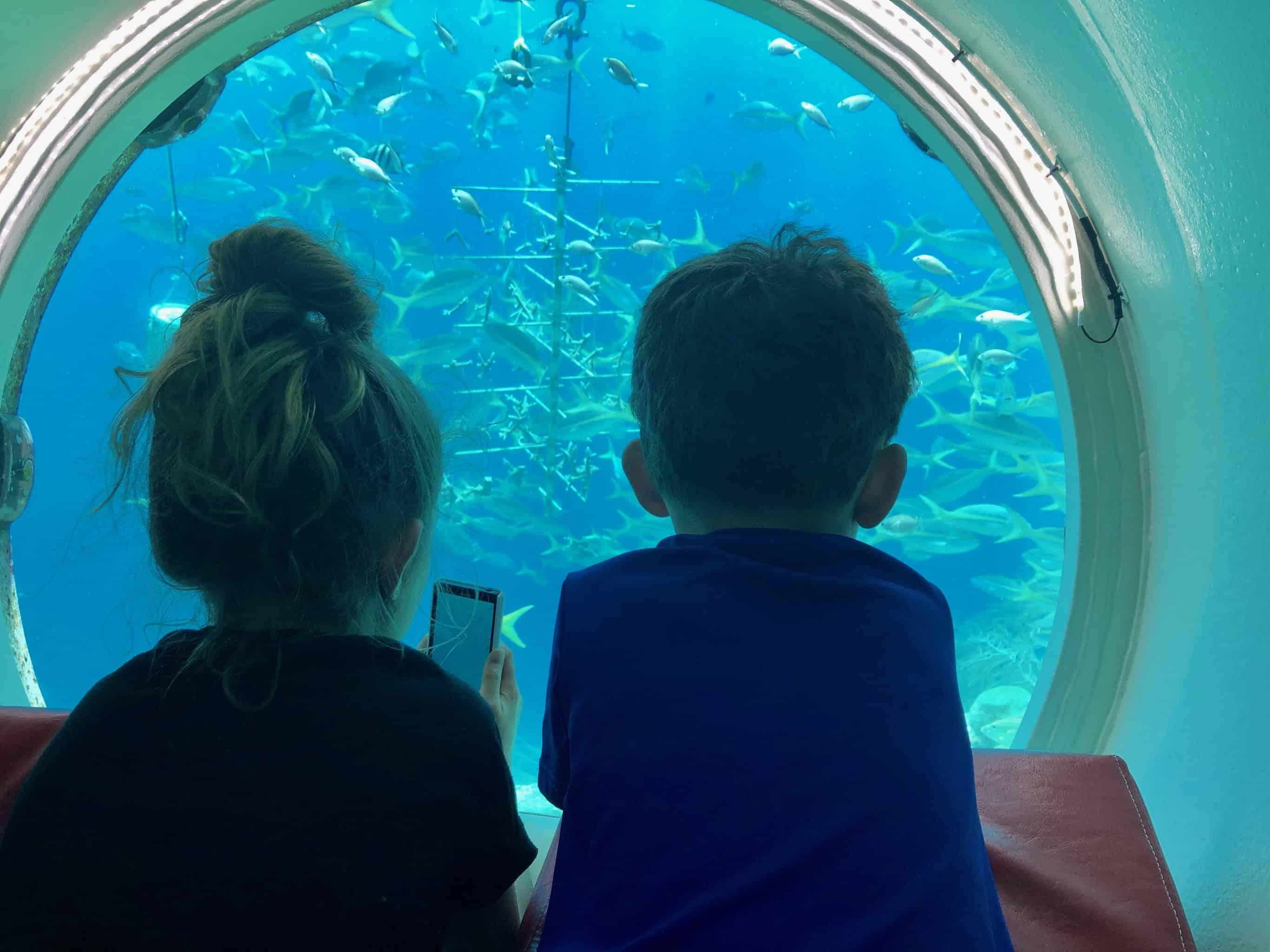 Curaçao Sea Aquarium Ocean Lens